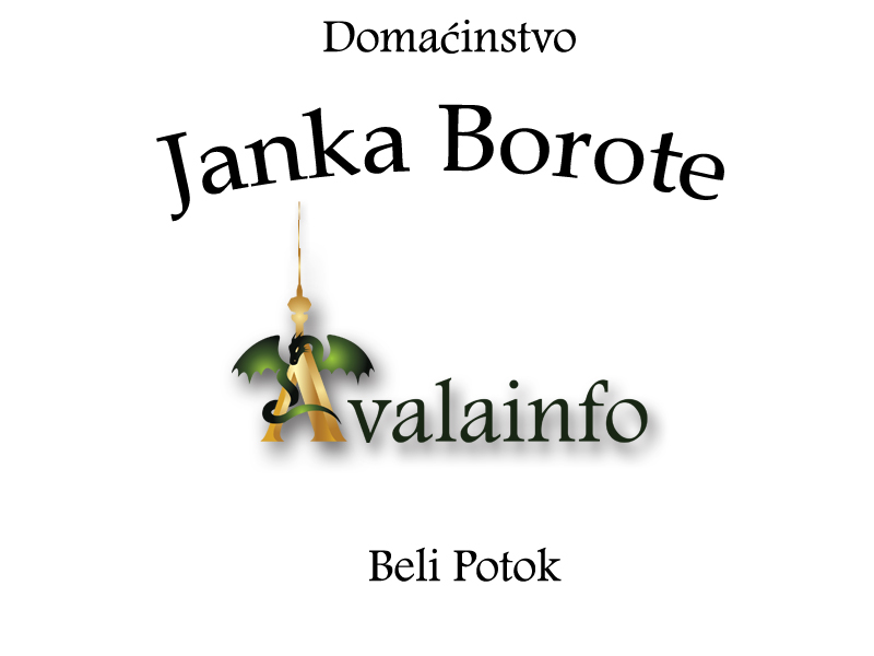 Janko Borota copy